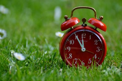 A red alarm clock on grass with flowers