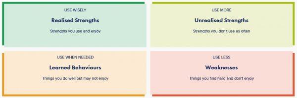 The Strengths Profile four quadrant model